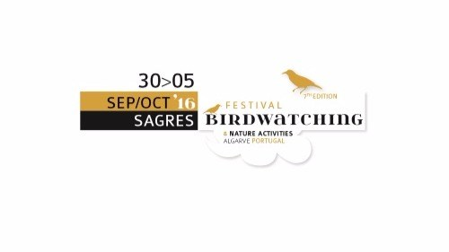 Birdwatching festival in Sagres